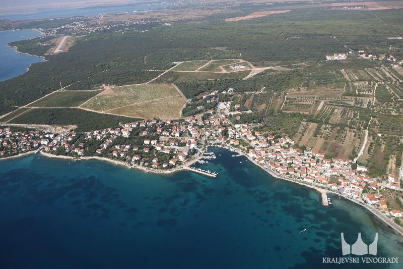 Kraljevski vinogradi - Punta Skala15