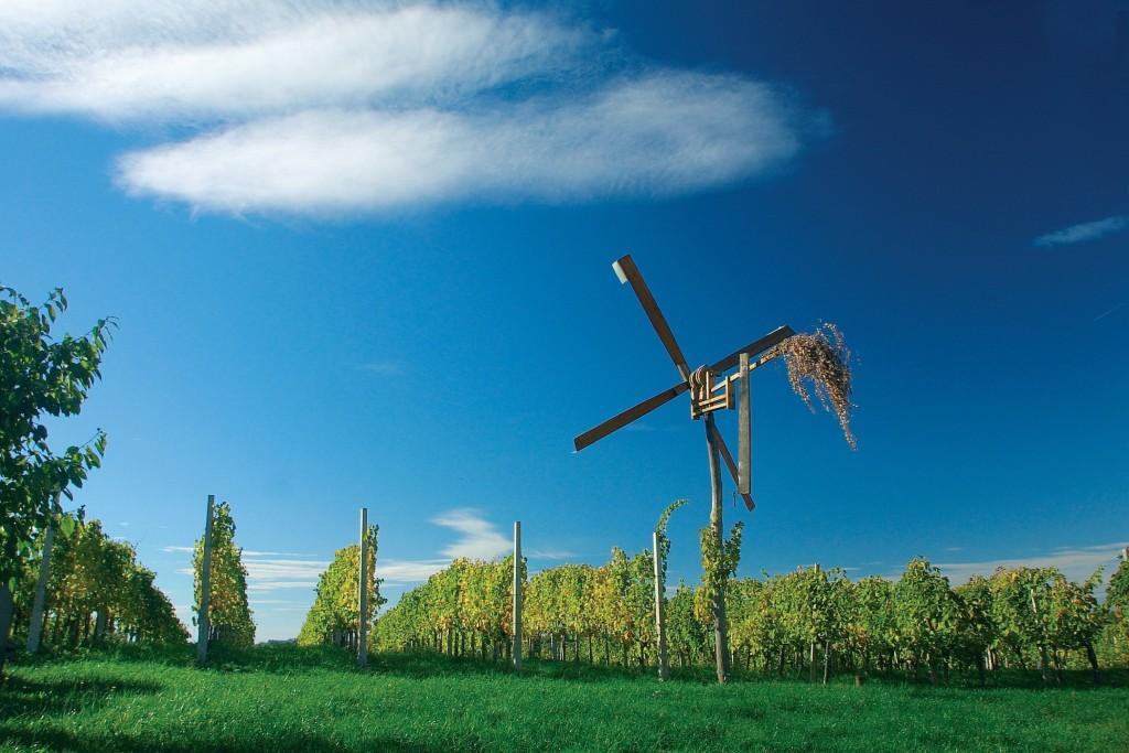 Zelinska vinska cesta